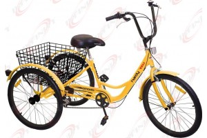 "6-Speed SHIMANO Shifter 24"" 3-Wheel Adult Tricycle Bicycle Trike Cruise Bike/Hardy"